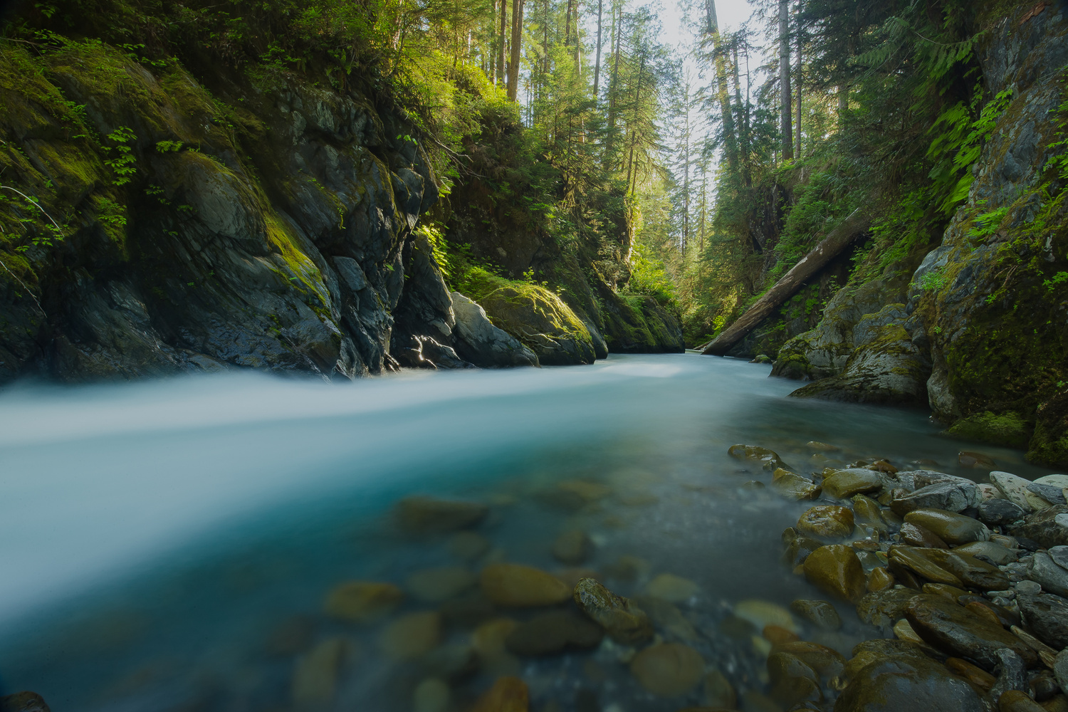 Olympic Waters by Colton Jacobs