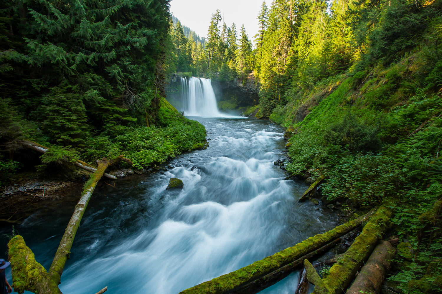 Oregon Waterfall  by Colton Jacobs