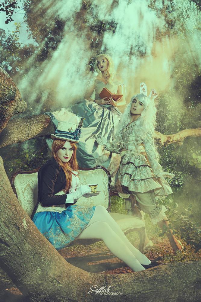 Wonderland by Mike Saffels