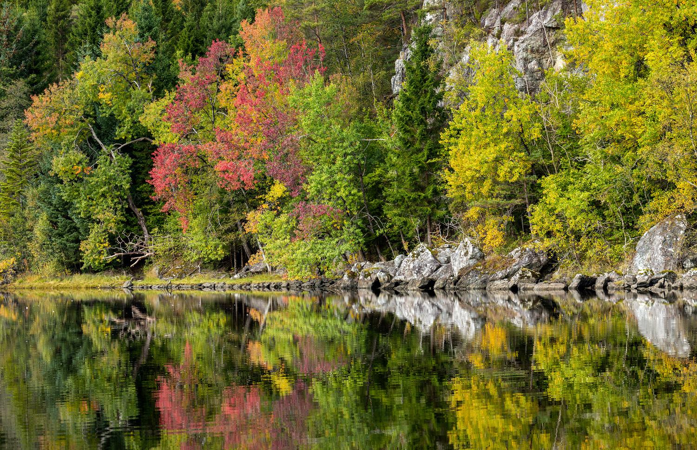 Autumn Is Here by Eirik Sørstrømmen
