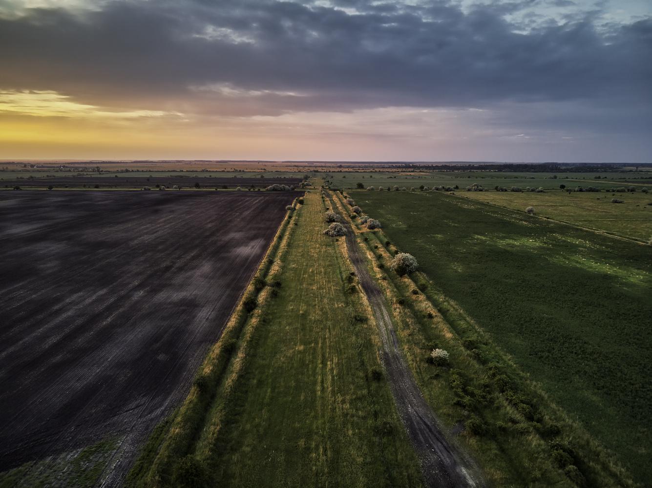 Lowland by Gergő Kardos