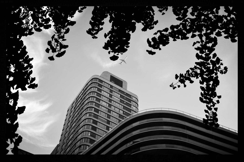 NYC by Yves Van den Meerssche
