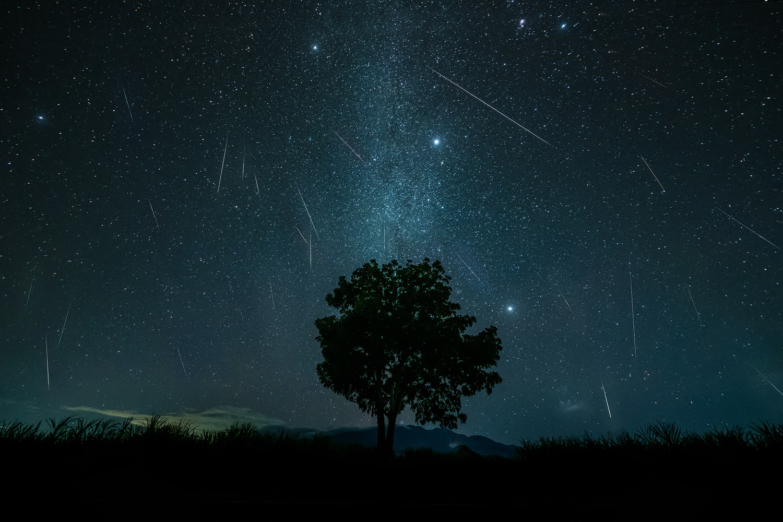 Geminid Meteor Shower 2020 by John Kimwell Laluma