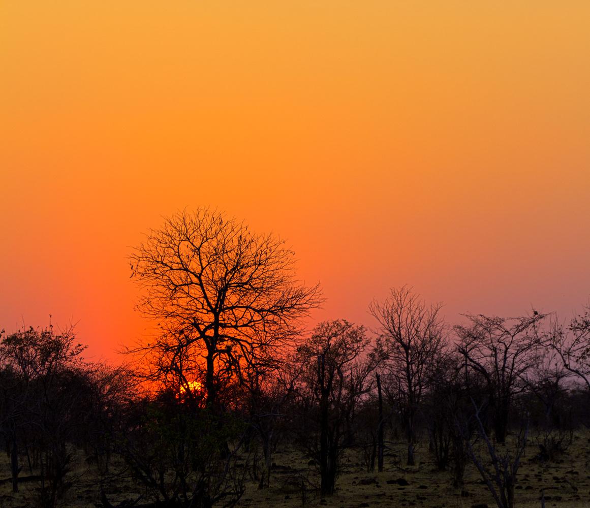 An Amazing sunset in Africa by Ram Ramkumar