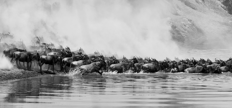 The river crossing by Ram Ramkumar