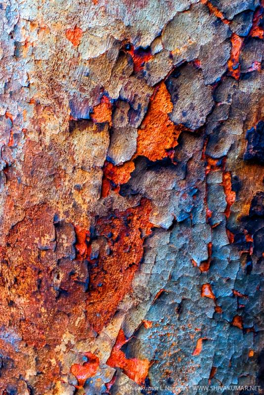 Colorful Impefections by Shivakumar Lakshminarayana