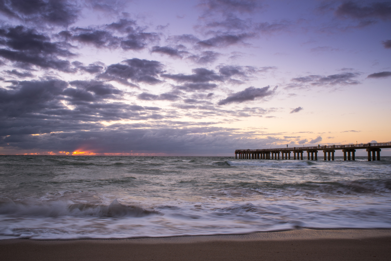 Miami Serenity  by Carlos Gouveia