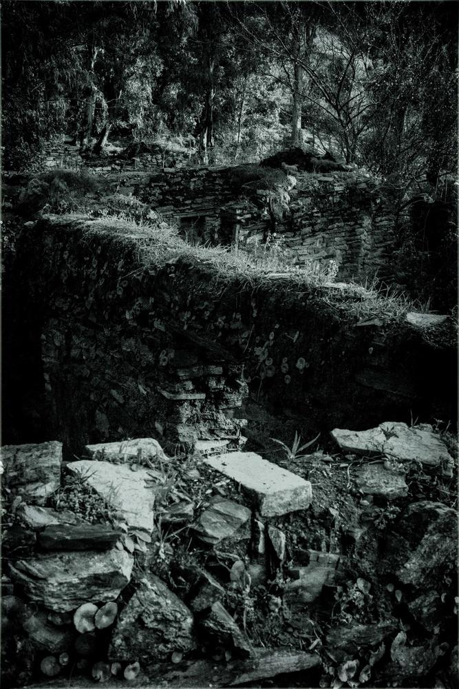 civilization collapse by moncef santos