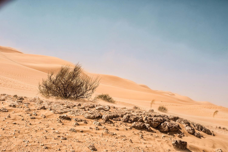 sandstorm by moncef santos
