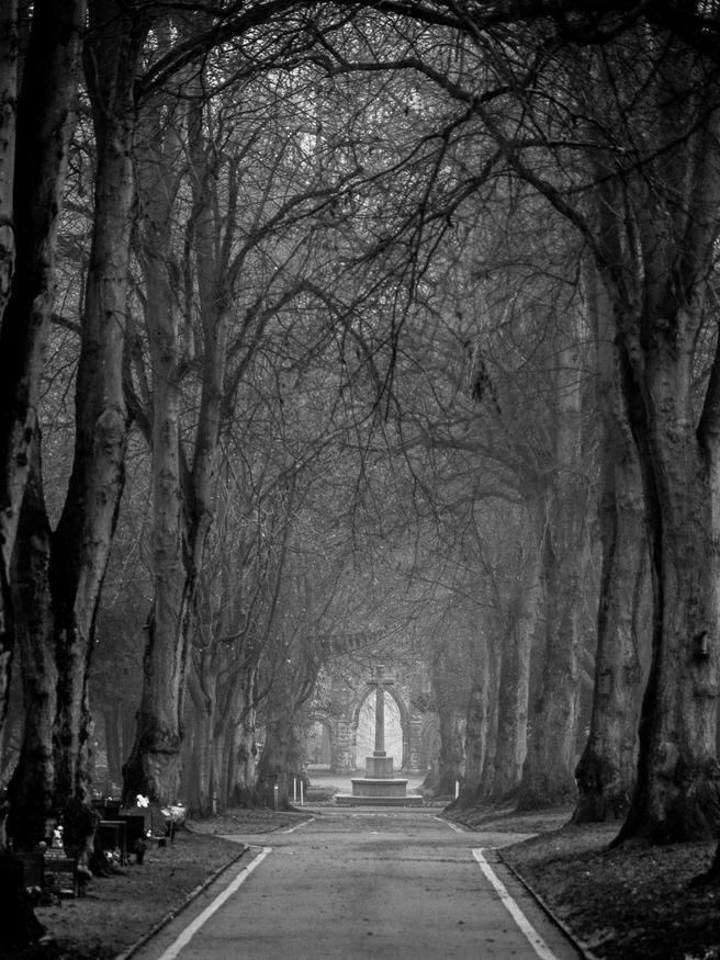 Newcastle-under-Lyme cemetery, dawn by Daniel Simon