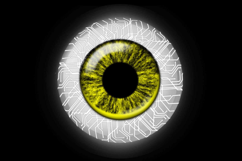 Synthetic Eyeball by David Ross