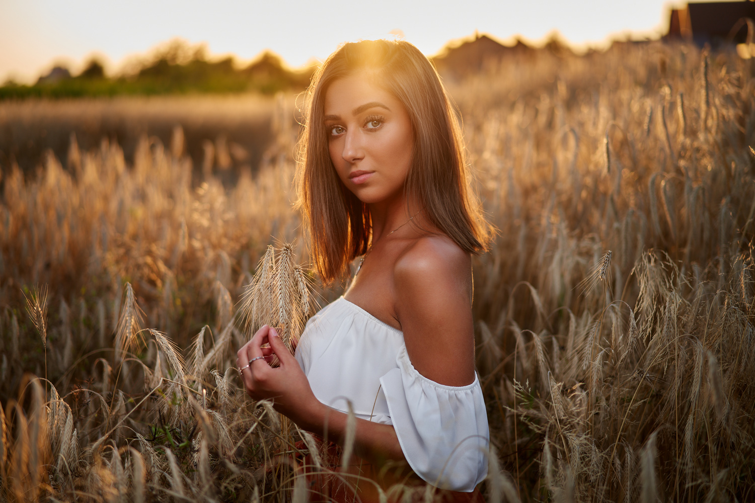 In the fields of gold by Damian Bereza