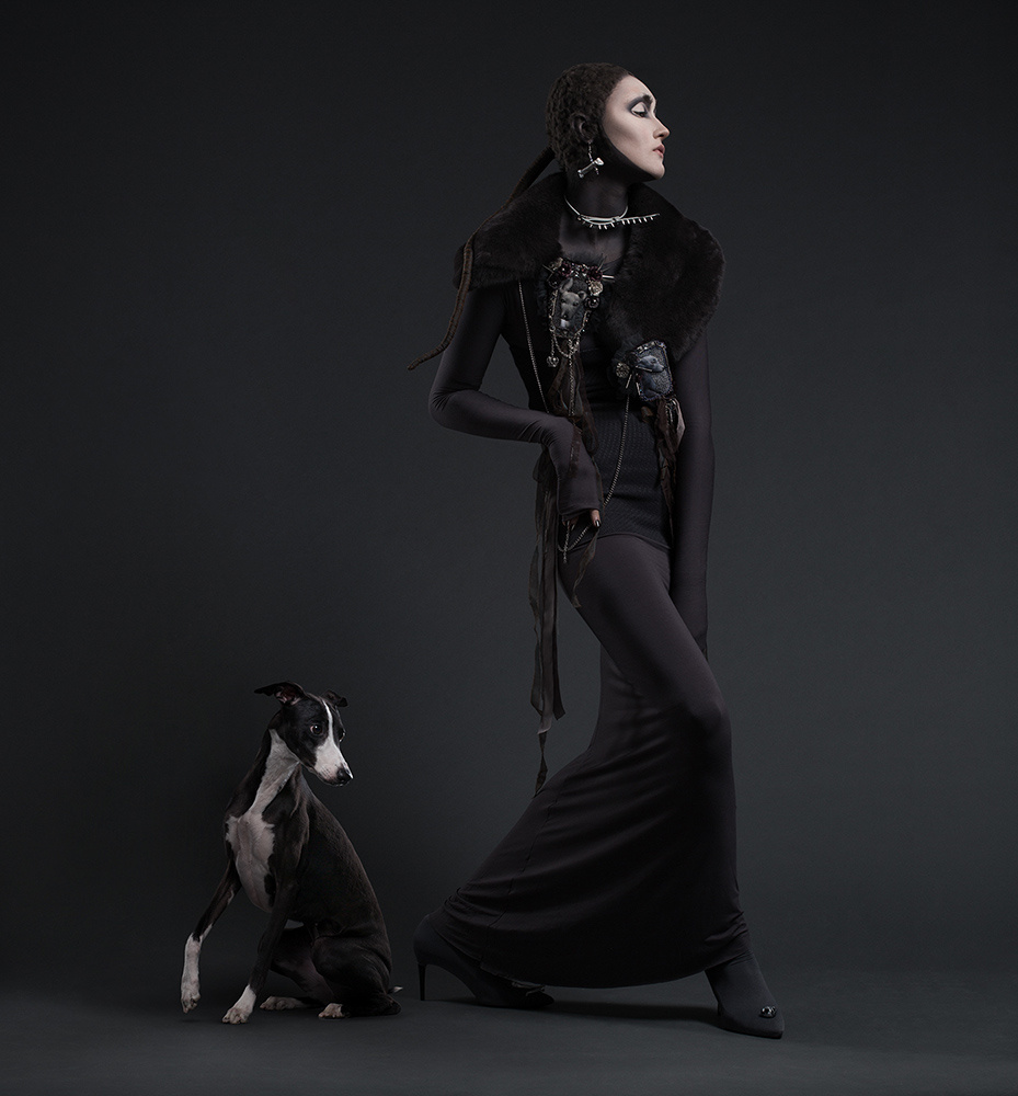 Dogs Alike. Whippet by Alexander Khokhlov