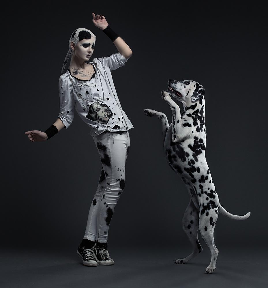Dogs Alike. Dalmatian by Alexander Khokhlov