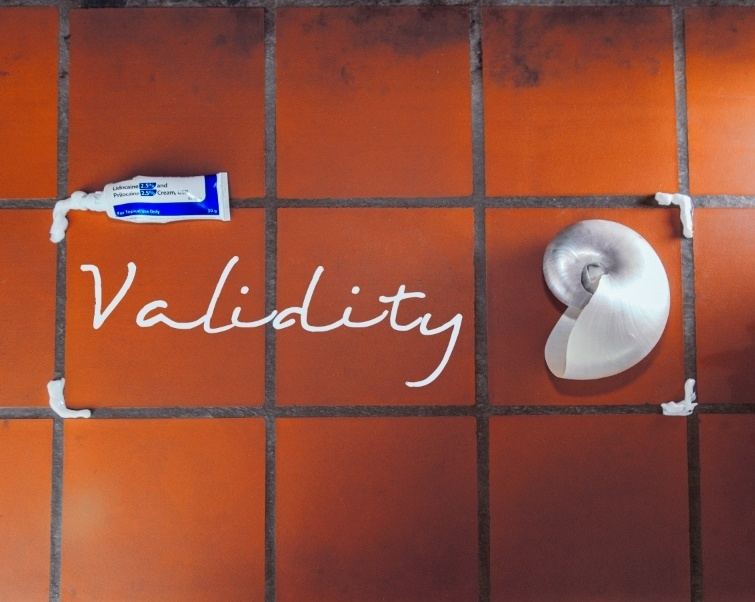 Validity by Quinn Wilson