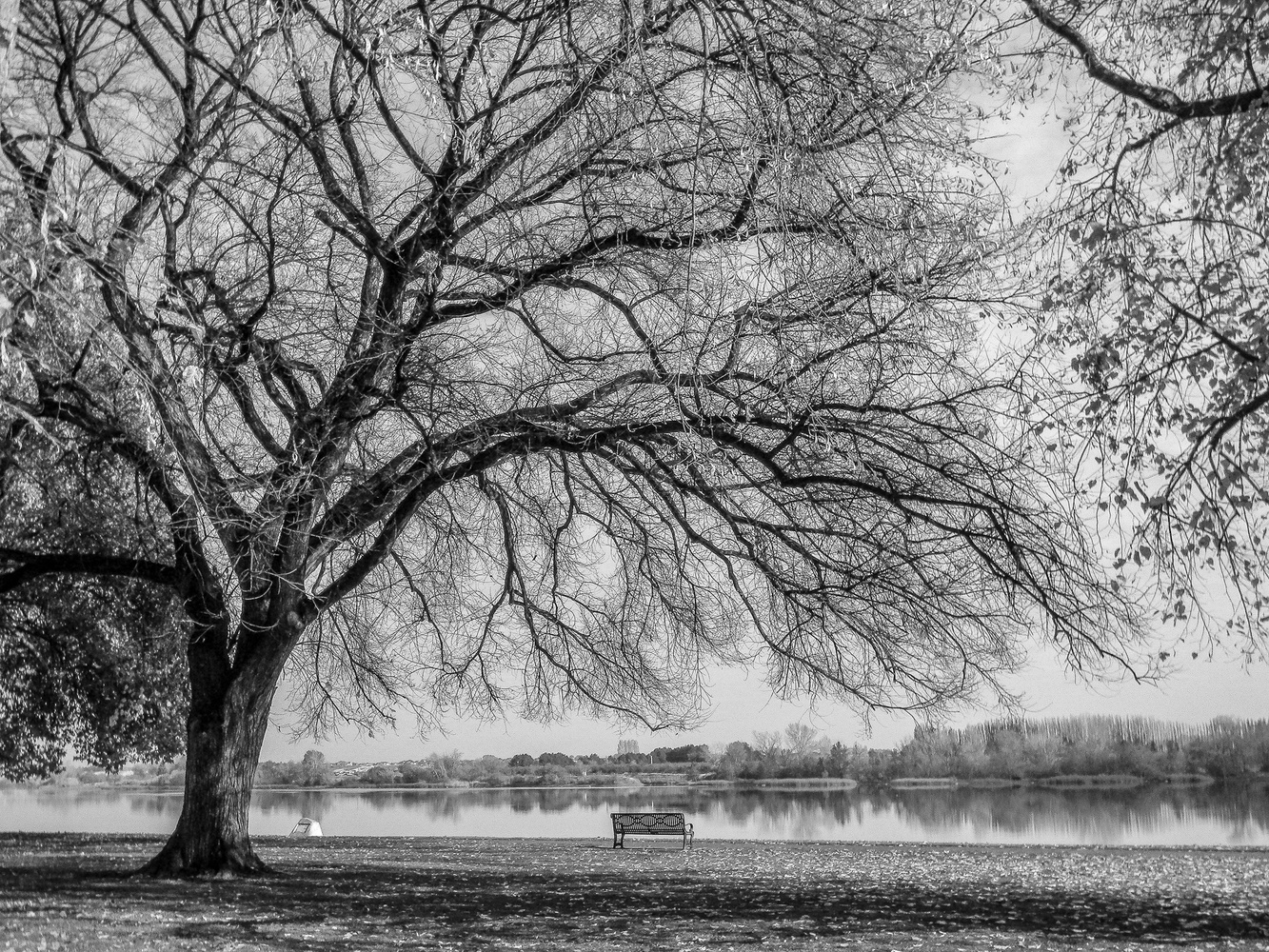 Empty bench by the river. by Chris Snyder