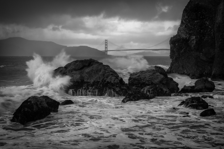 ~ Windswept at Lands End - by Scott Eliot