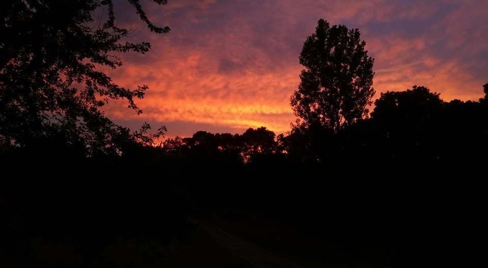 Sunset Siloette by Nathan Klich