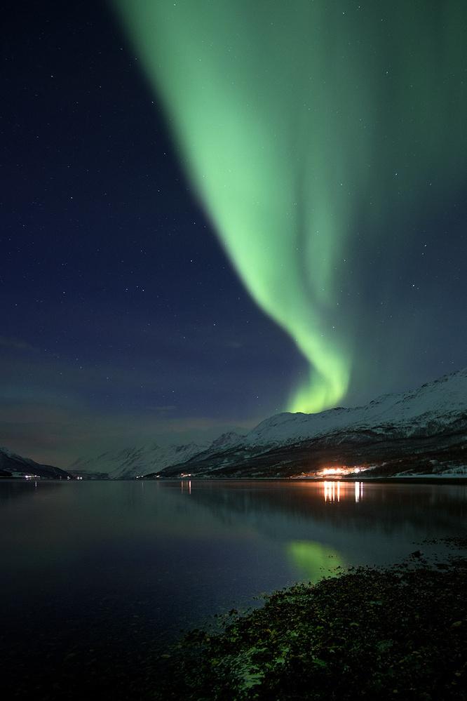 Norway - Northern Lights by Franco Cappellari