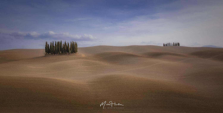 Cipressi di San Quirico d'Orcia by Markus van Hauten