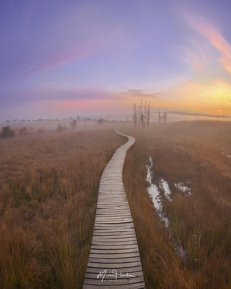 The path by Markus van Hauten