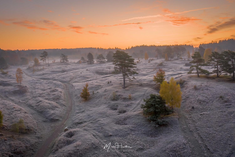 One cold morning... by Markus van Hauten