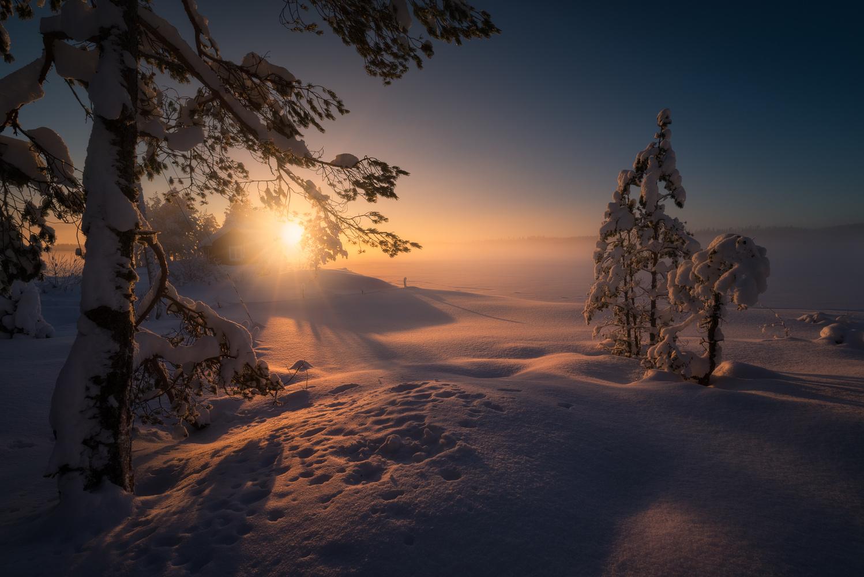 Misty Light by Ole Henrik Skjelstad