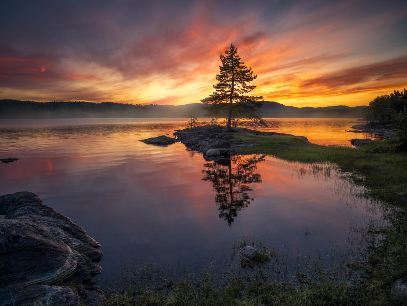 The Warmth of Summer by Ole Henrik Skjelstad