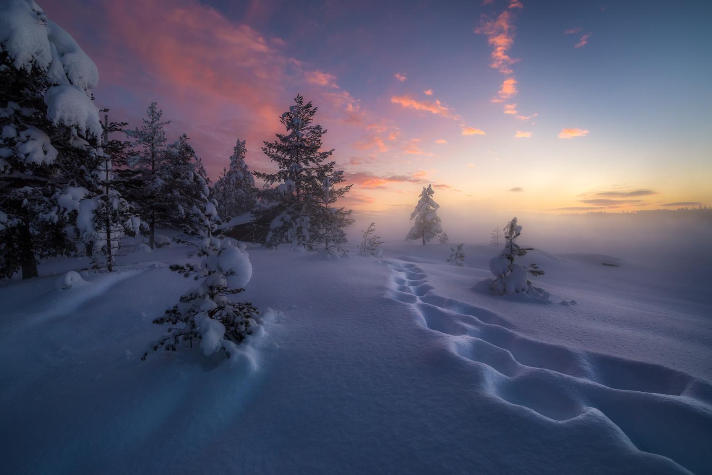 Winter Steps by Ole Henrik Skjelstad