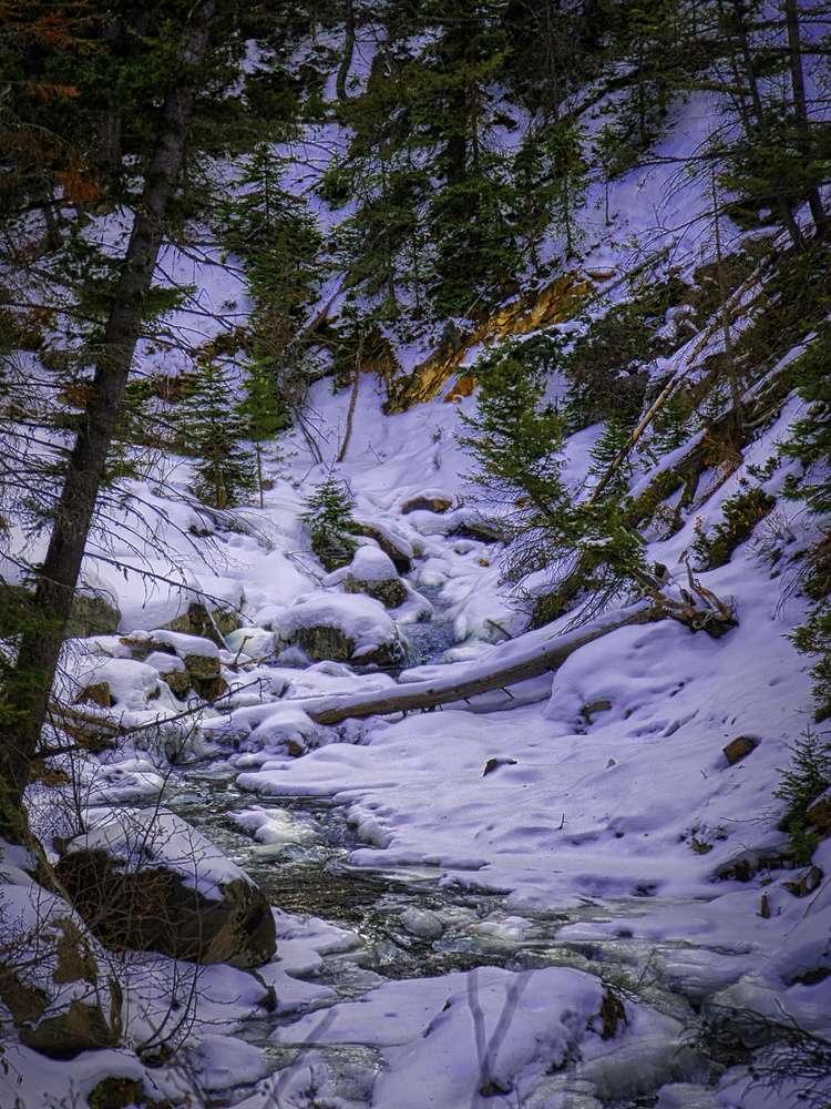 Winter Falls by Steve Meredith