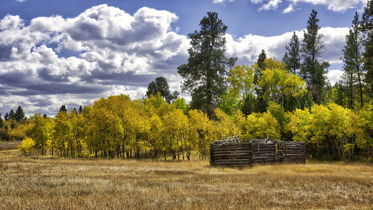Old Homestead Cabin by Steve Meredith