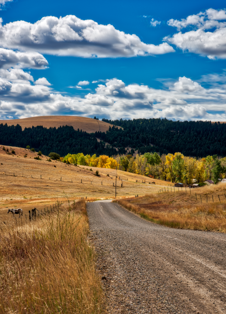 Country Road, Montana by Steve Meredith