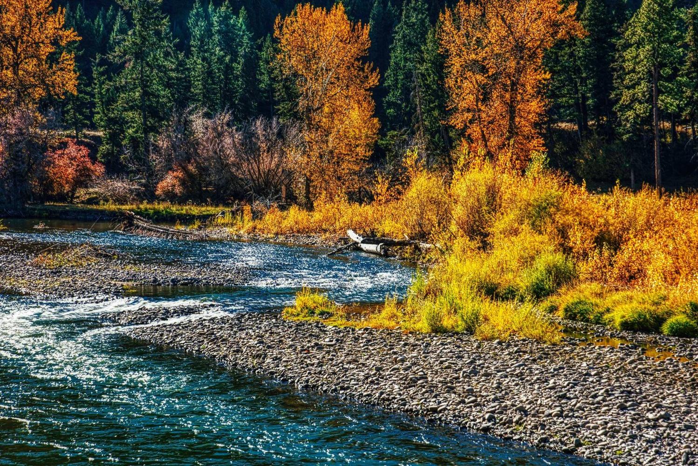 Clark Fork River bend by Steve Meredith