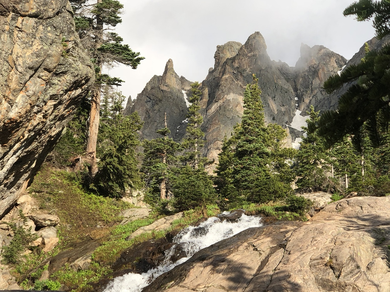 Forest Crags  by William Varner