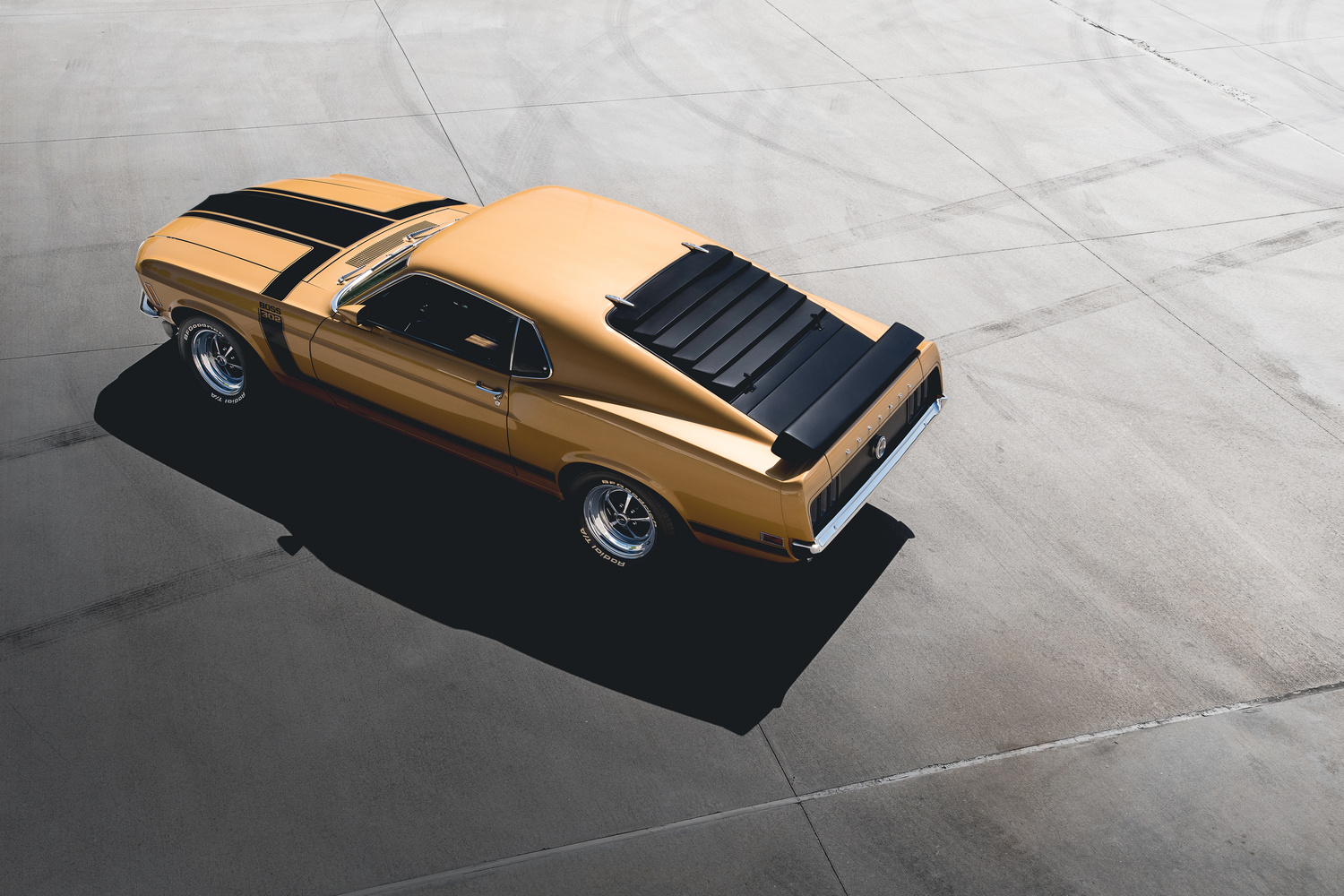 Ford Mustang Boss 302 by Dominic Mann
