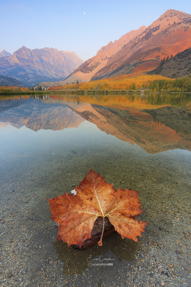 Fall is here by Erick Castellon