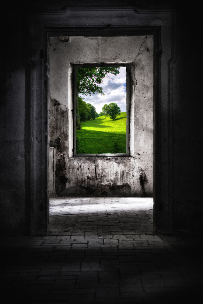 Life beyond the walls by Stefano Venturi