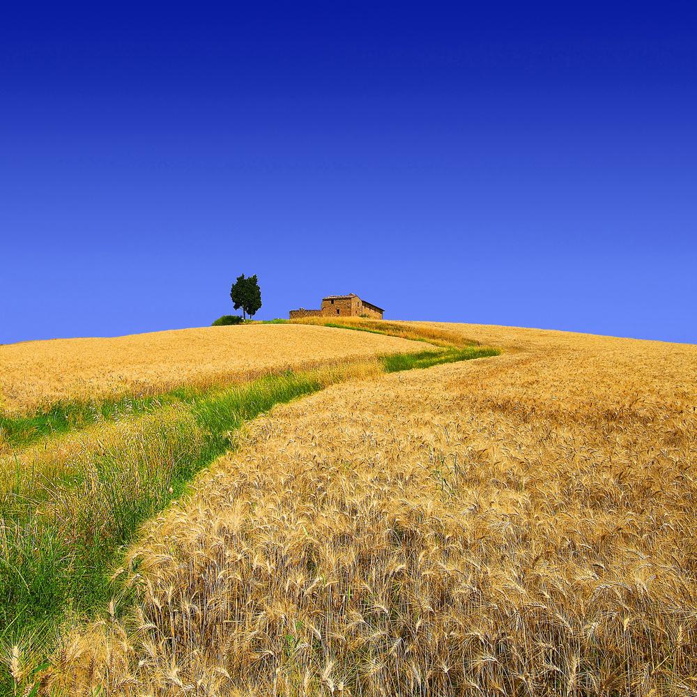 The hill of solitude by Stefano Venturi