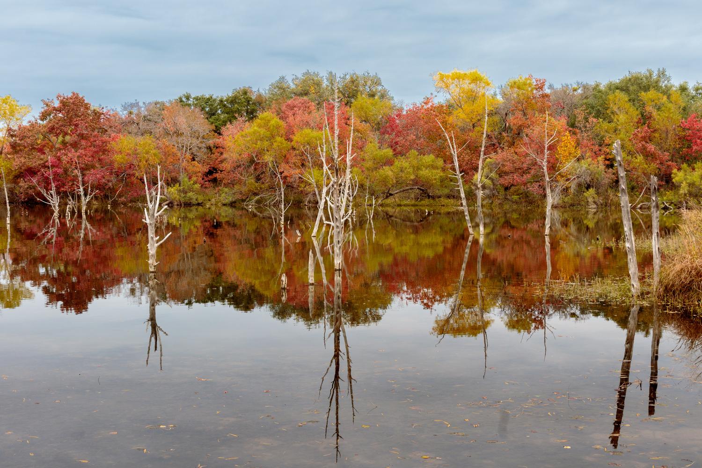 Fall Landscape by Rusty Myers