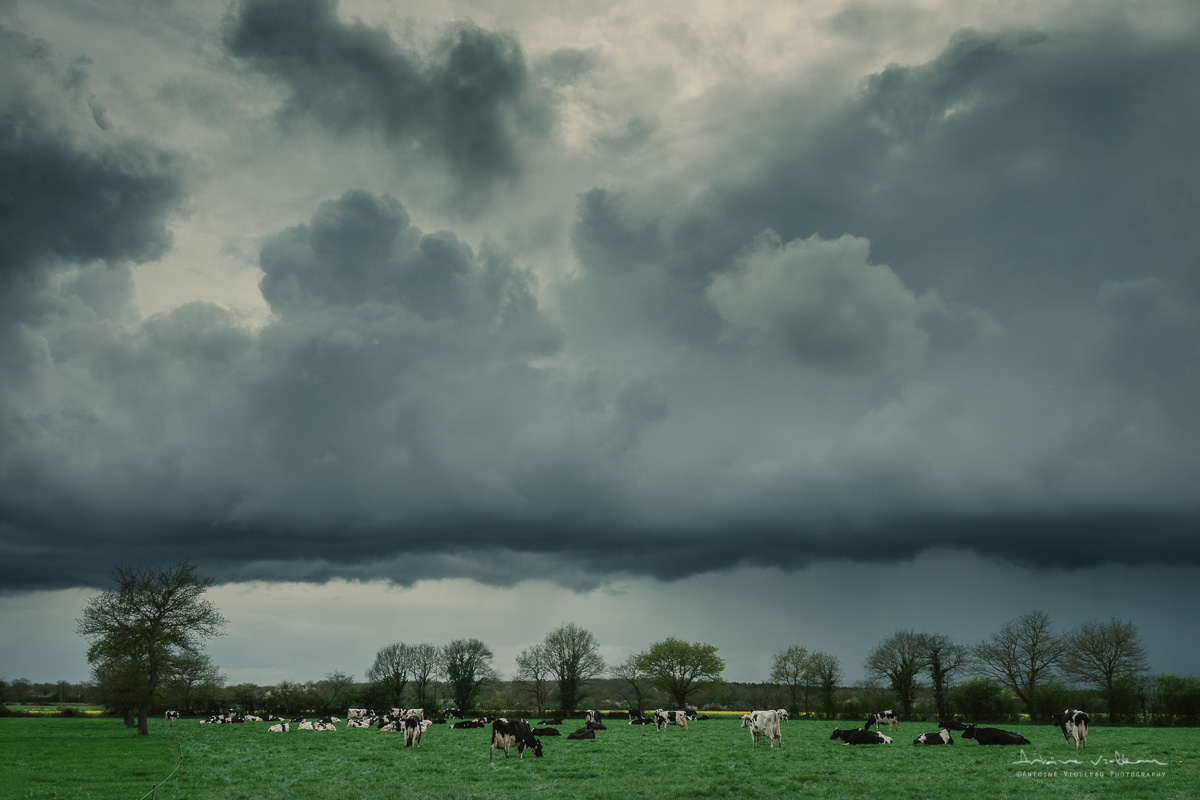 Storm Lomming on Countryside by Antoine Violleau