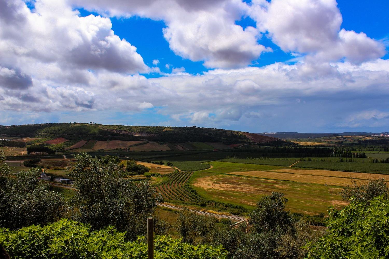 Portugal Farm by Jacob Boavista