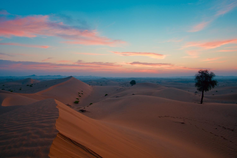 Good morning desert by Ron Cunningham