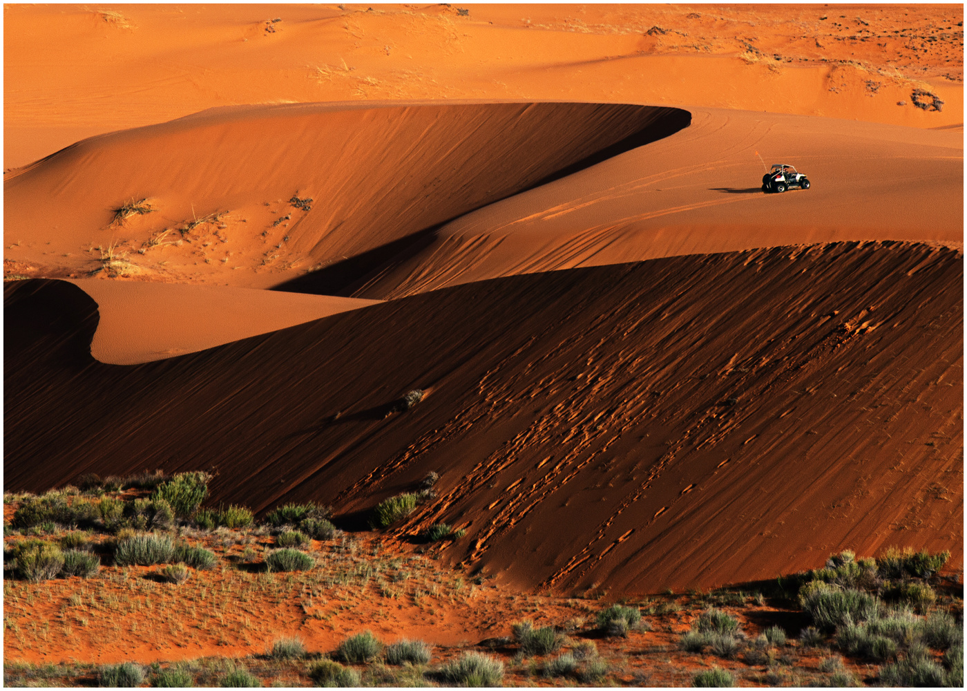 A Day at the Dunes by Cliff Mueller
