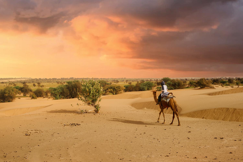 Going on an adventure in Thar desert by ARNAUD HUYGENS