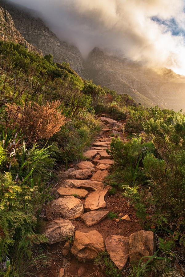 Table Mountain Stone Path by Ryan Hohm