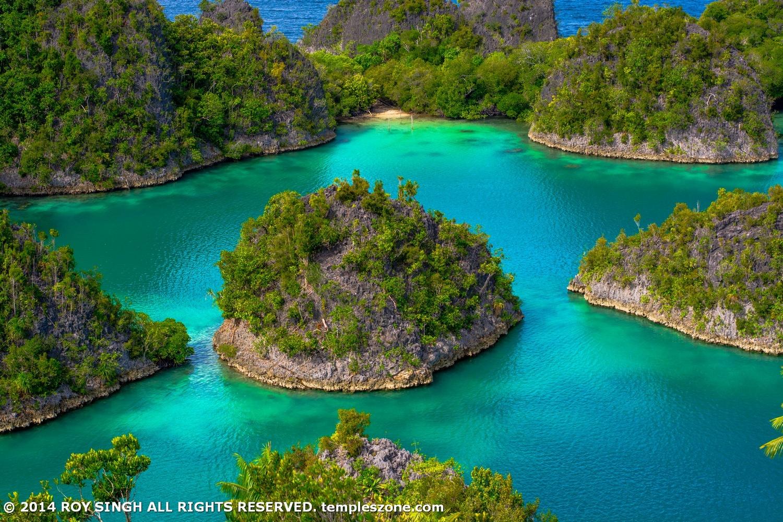 Pianemo Islands Raja Ampat 013 by Roy Singh