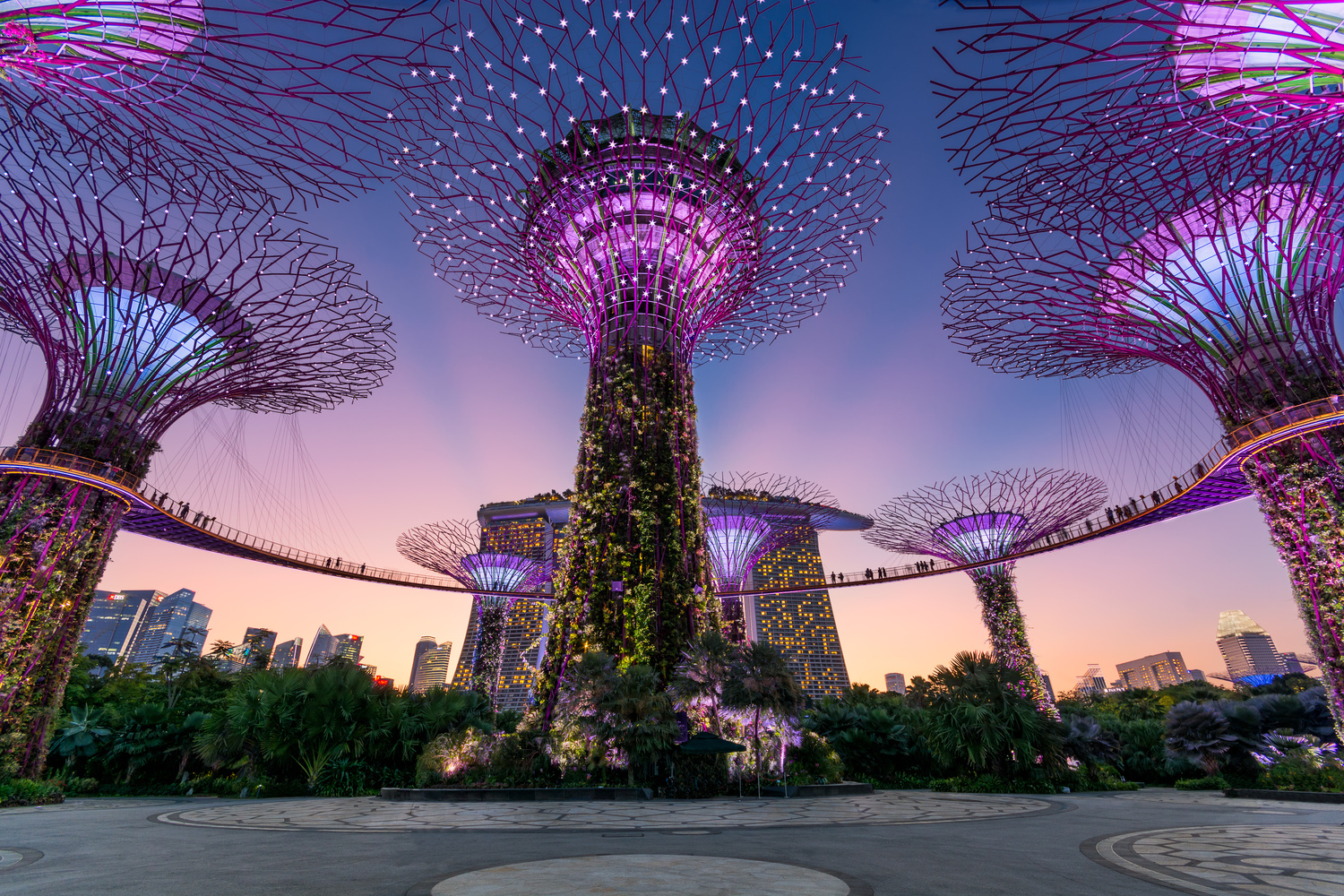 Garden by the bay sunset by KENNETH FURMAN