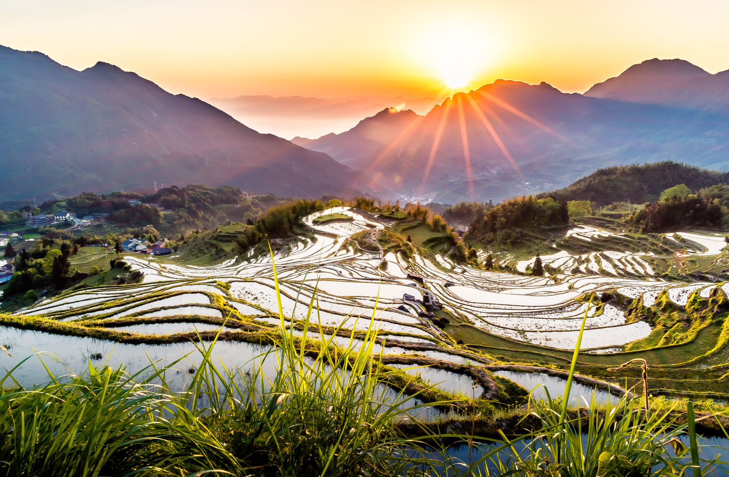 Yunhe Rice Terrace by Henrik Forsting