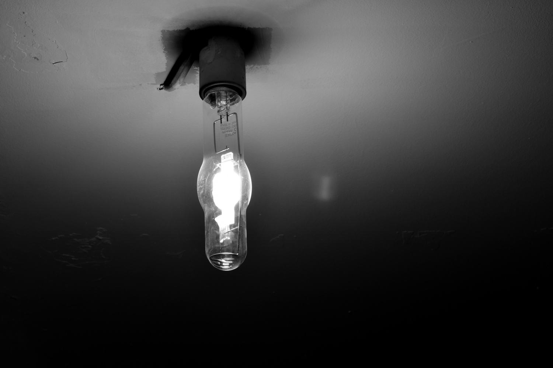 White bulb in monochrome by Savvas Stavrinos