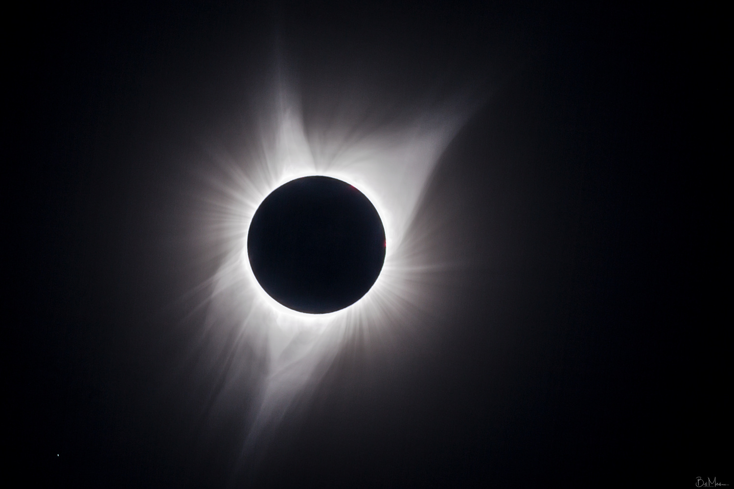 The Great American Eclipse by Bill Metallinos